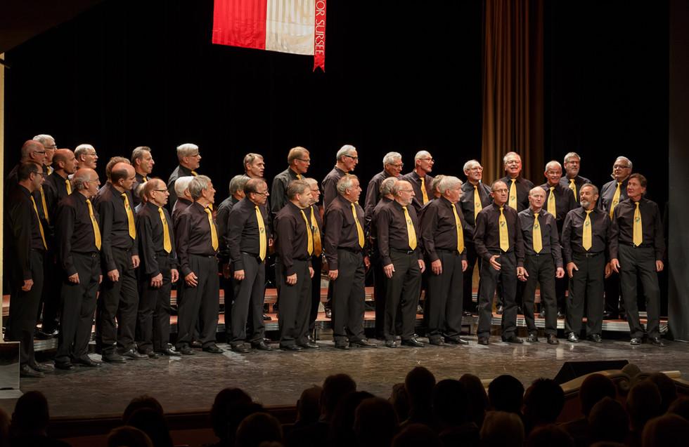 Singspiel Sängerherzen 2017