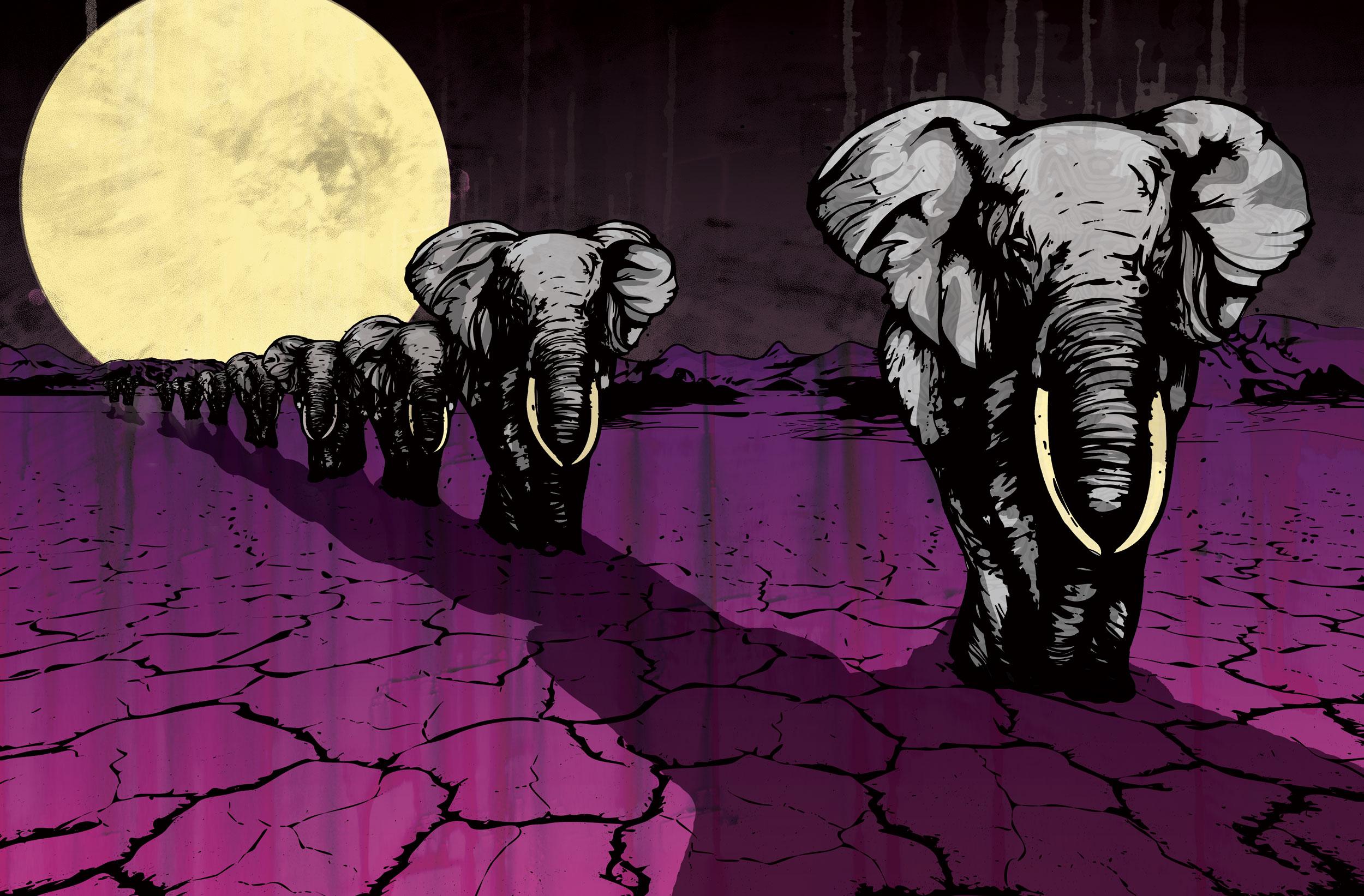 ElephantMarch