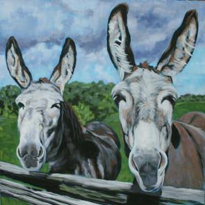 """""""Donkeys One"""""""