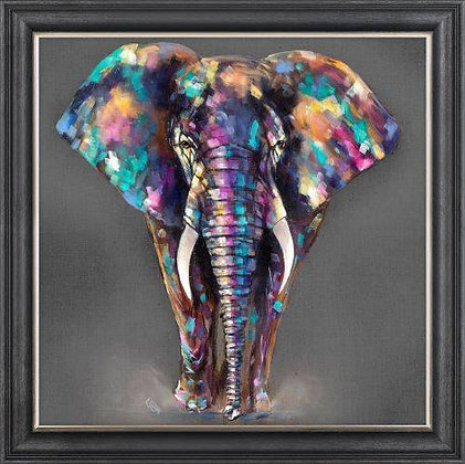 Coloured Elephant Picture