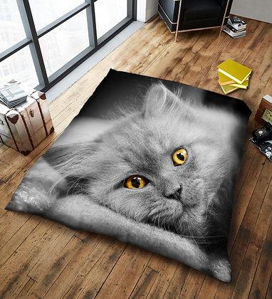 Cute Cat Blanket