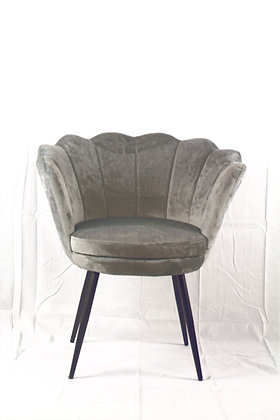 Shell Designed Light Grey Chair
