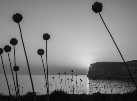 Vernissage de mon exposition Noces Méditerranéennes
