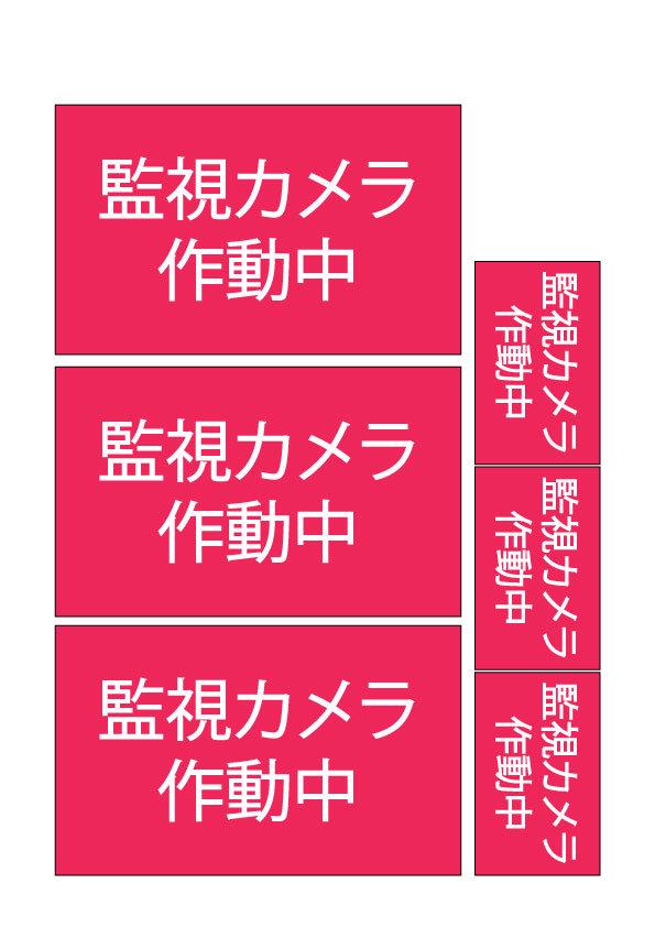 作動中監視カメラ.jpg