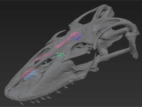 Dhemerae's 5 Faves: ZBrush Commands