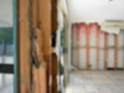 Pest Control Bundaberg- Termite Treatment Bundaberg- Termite Inspection Bundaberg- Carpet Cleaning Bundaberg- Upholstery Cleaning Bundaberg- Conrete Cleaning Bundaberg