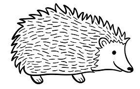 hedgehog_edited.jpg