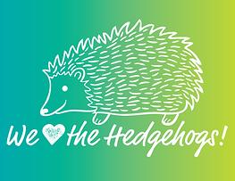 van hise hedgehog.png