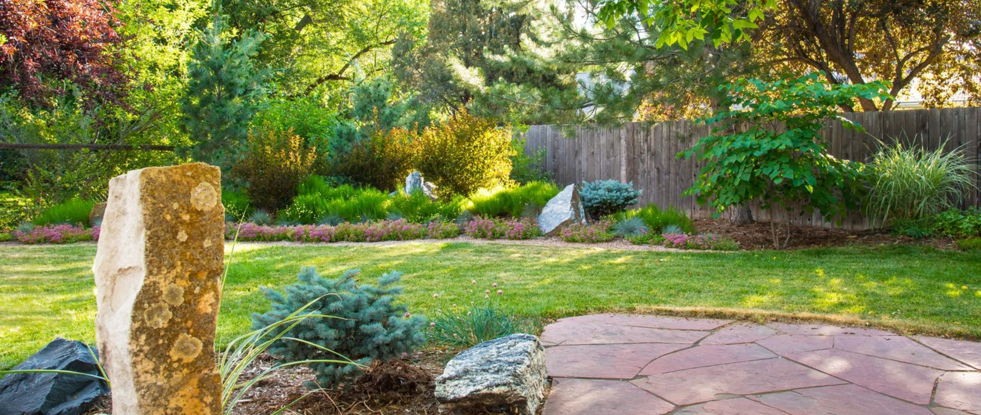 Backyard-wide-view-cropped-1440-pix-wide