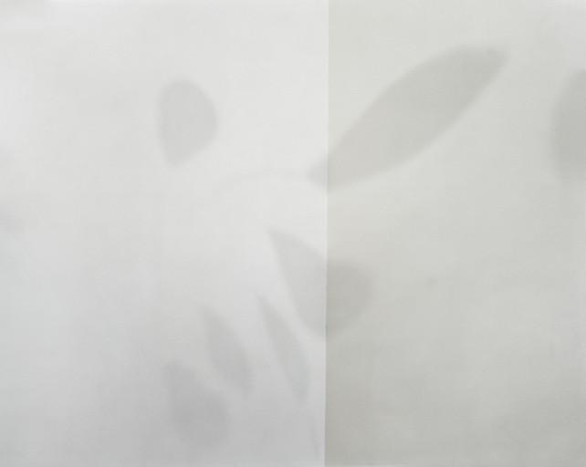 Untld.-66 2005 (Calder)