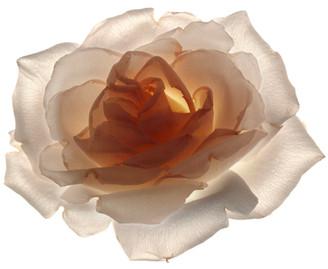 Flower 53 White Series 2003