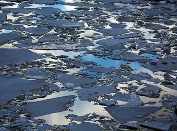 Ice 301, 2014