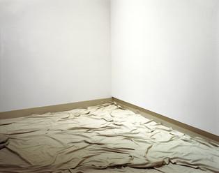 Untld.-91 2005 (PaintersTarp)