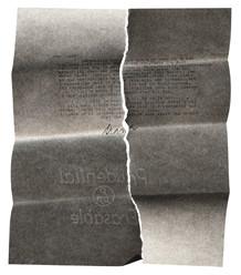 """""""Ripped"""", (Diane Arbus), 2005"""