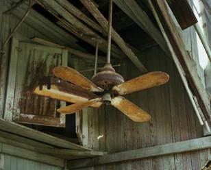 Fan, Texas 1992
