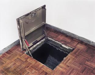 Untld.-144 2010 (Whitney Floor Hole)