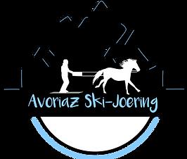 skijologo.png