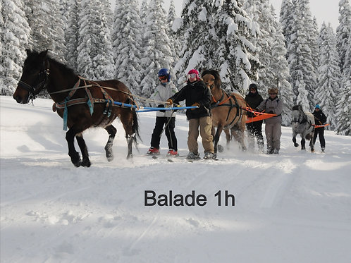 Balade 1h