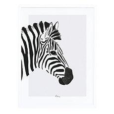 Affiche animal noir et blanc savane afrique avec cadre