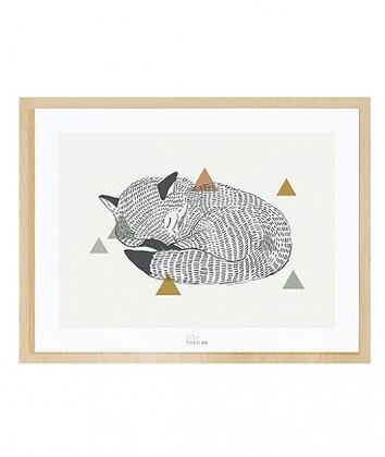 Affiche et cadre renard qui dort nature noir et blanc marron