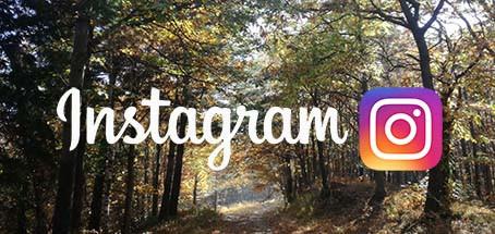 Ora siamo anche su Instagram!