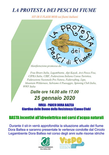 """25 Gennaio - Sit in """"La protesta dei pesci di fiume"""""""