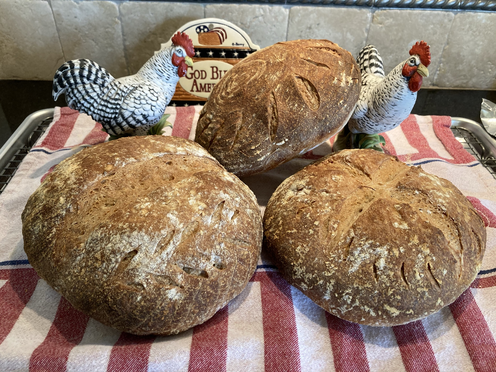 Rustic whole wheat