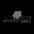 TurtleJacks_logo.png