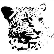 Ingwe Logo.png