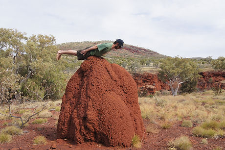 Jacob Lehrer - planking a termite mound.jpg
