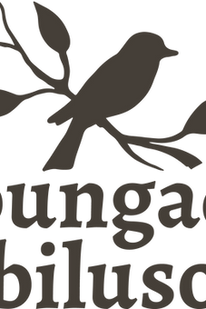 Brown bungad biluso logo