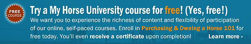 Image advertising MHU's free courses