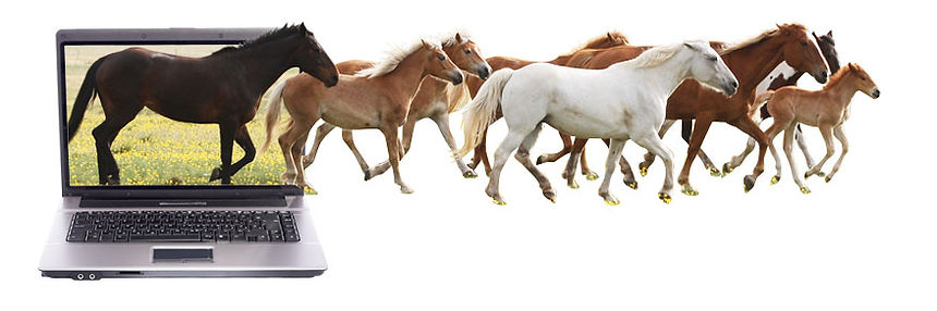 Herd of horses running out of a computer