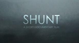 Shunt