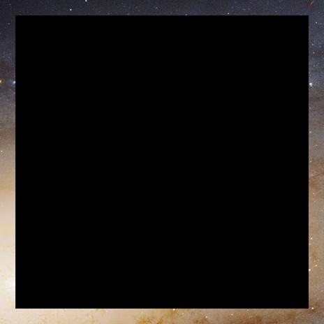 a void. (HUBBLE BLACK & TAN)