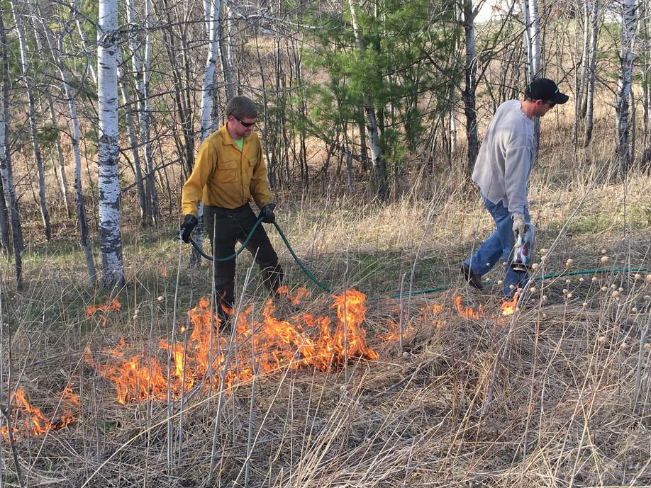 2017 Burning