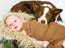 newborn and pet dog photograph