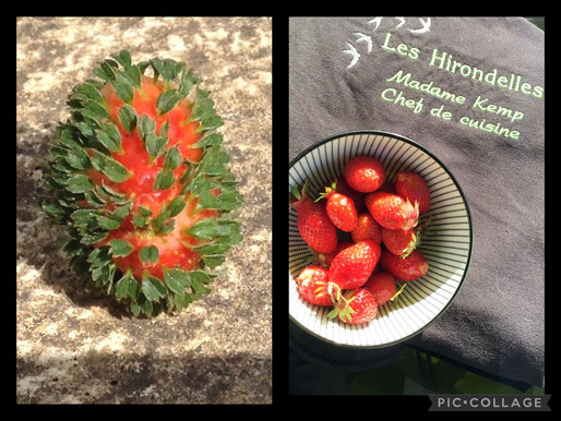 it's all about the strawberry!