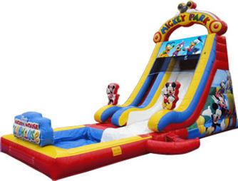 Mickey Park Slide
