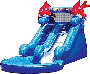 Lil'Kahuna Water slide