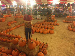Whittier Pumpkin Patch