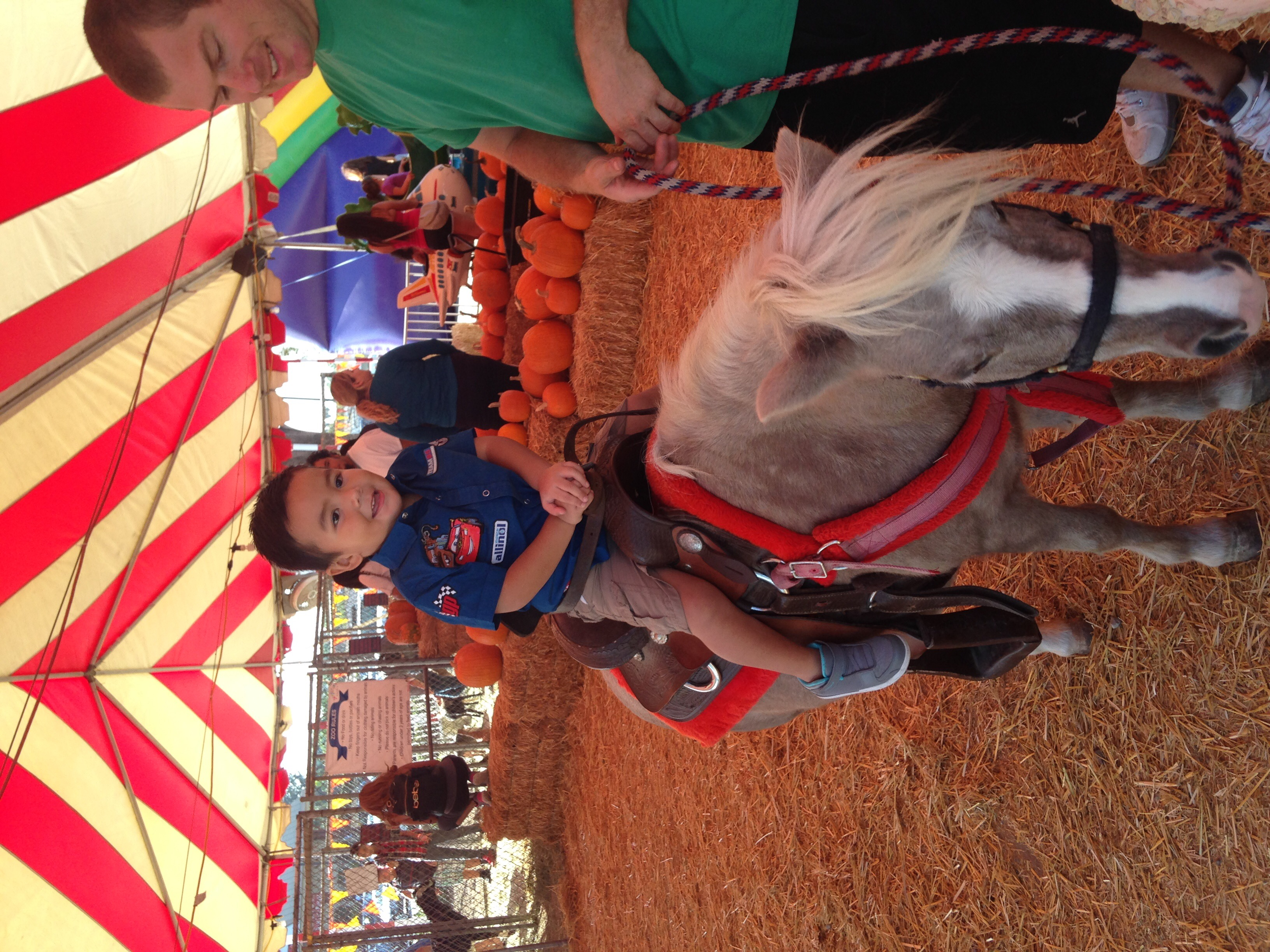 Whittier Pumpkin Patch pony ride