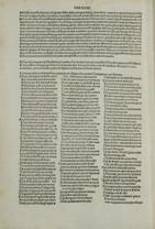 1491_Piasi