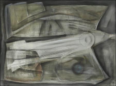 Fossilus Nautilus