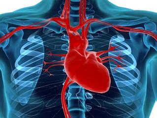 Cuidados com o coração durante o tratamento de um câncer