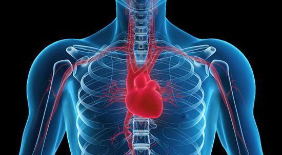 exames cardiologicos