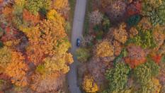 Following Car through Fall Trees   Drone