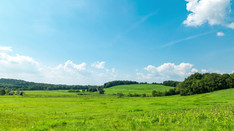Grassy Feild with Blue sky and clouds   Time Lapse