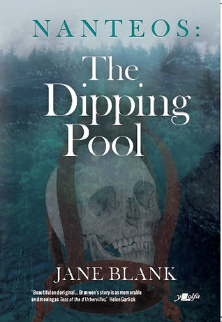 Dipping Pool Cover.jpg