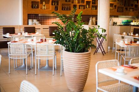 Des plantes dans les restaurants